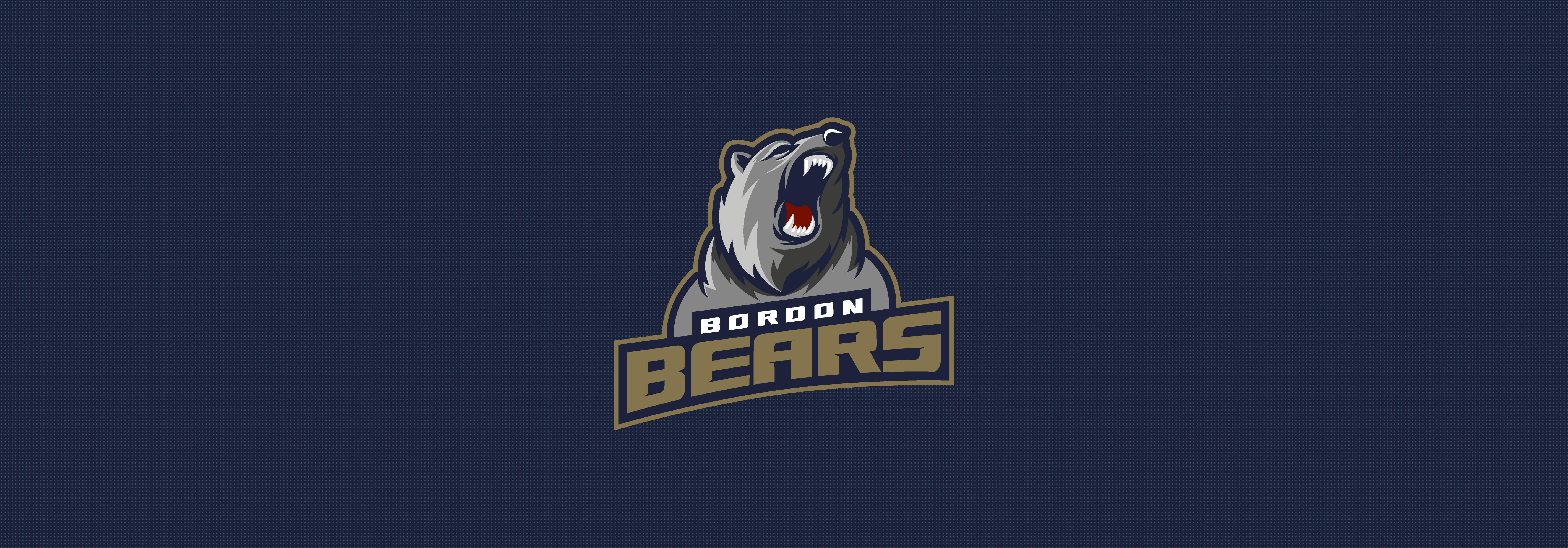 Bordon Bears Hoodie
